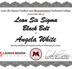 Lean Six Sigma Toolbox Black Belt Certificate